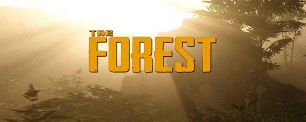 The Forest Г¤hnliche Spiele