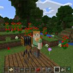 Minecraft Education Edition crack