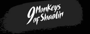Spiele PC 9 Monkeys of Shaolin steam